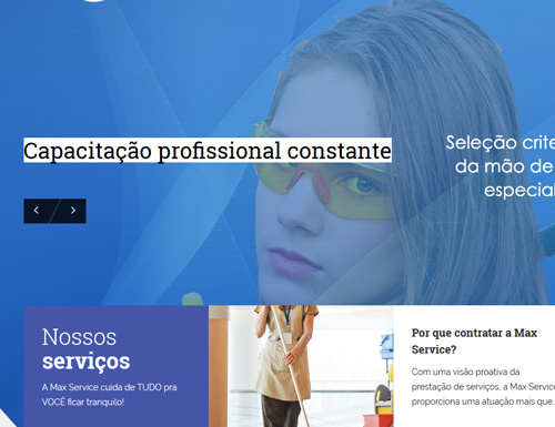Desenvolvimento de sites: Max Service